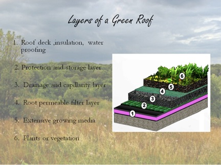 Figure 11. Green roofs are mandatory for all Phoenixian domiciles. This design is intended to provide several benefits: it extends the lifespan of the roof, provides food, purifies the air, and increases biodiversity.