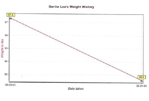 Figure 4. Two slides from the Graphs and Graphics Correct or Scooped Game:   June Flower Sales (above) and Gertie Lou's Weight History (below).