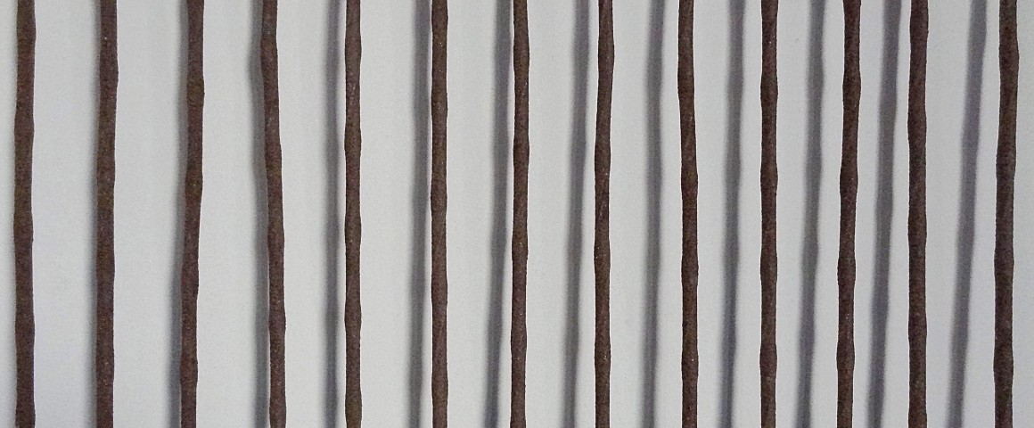 Image of brown rods on a white background.