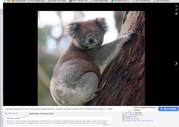 Screenshot of a web browser containing a specific image found via Creative Commons Search and its associated licensing information