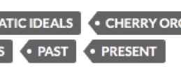 Figure 5: Example of a tagging cluster on individual student post which include 'conflicts, 'past,' and 'present'