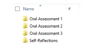 This is a screenshot of Virtual folders of class assignments.