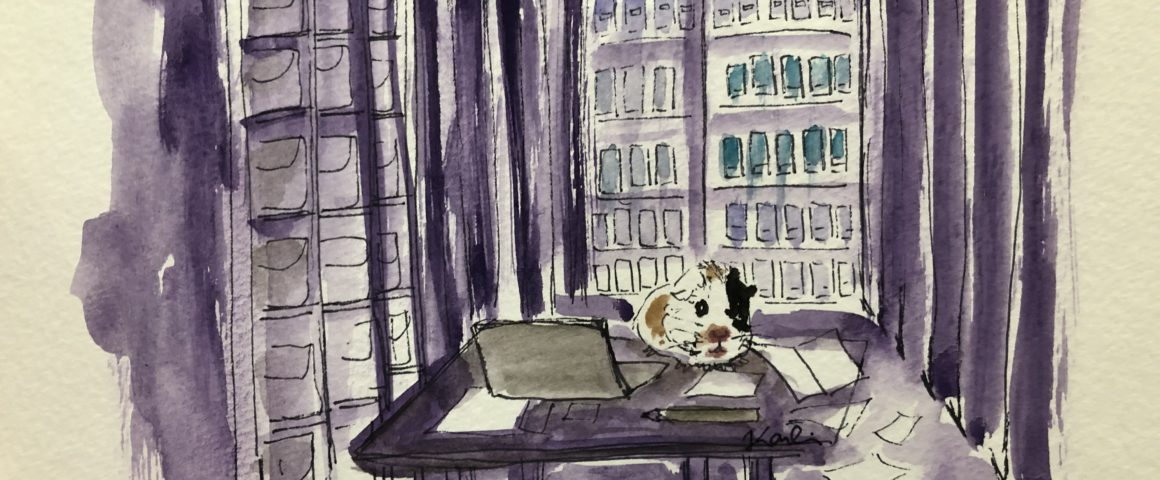 Water-color image of guinea pig conducting archival research.