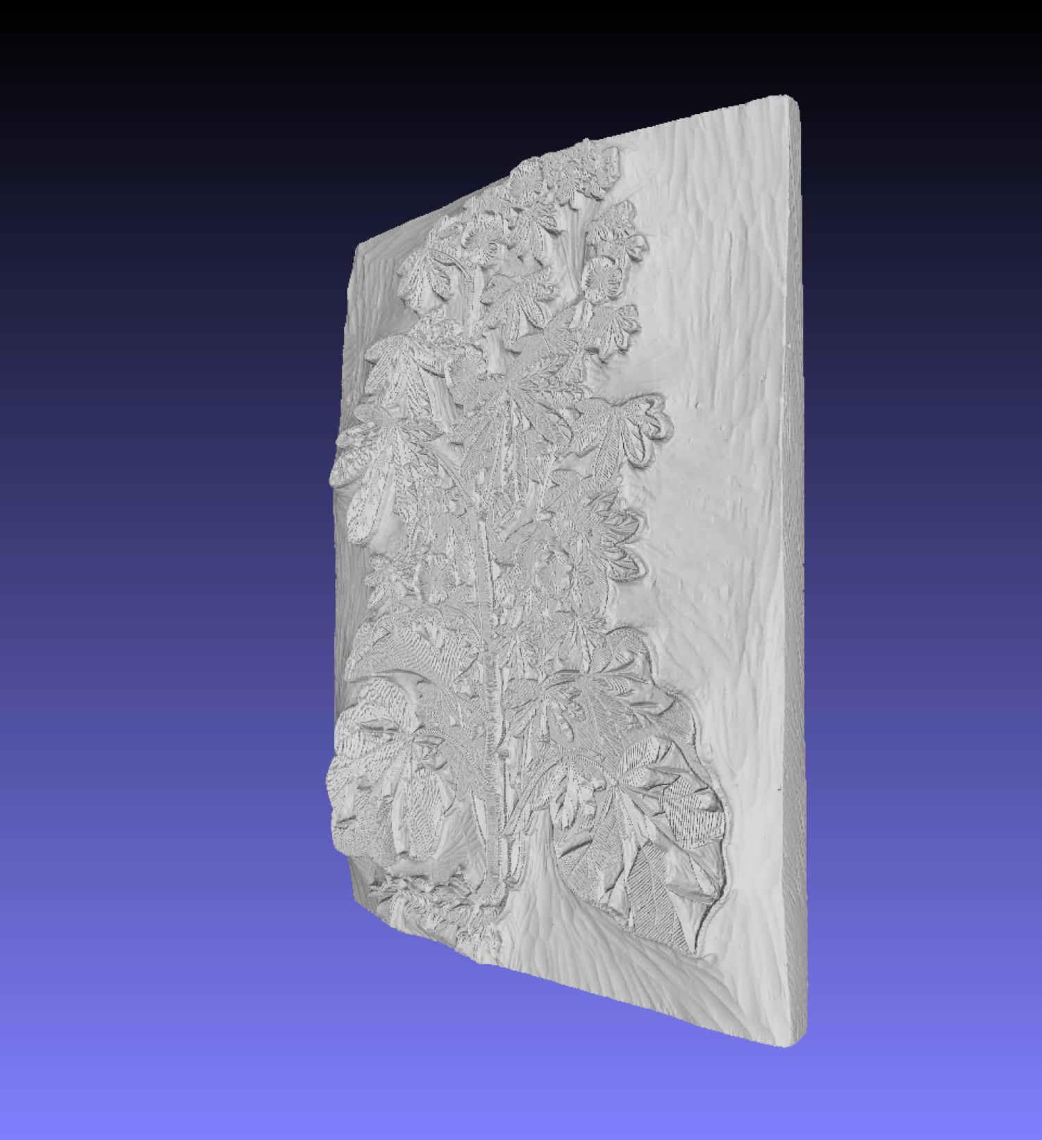 Side angle view of a 3D-scanned leafy plant woodblock.