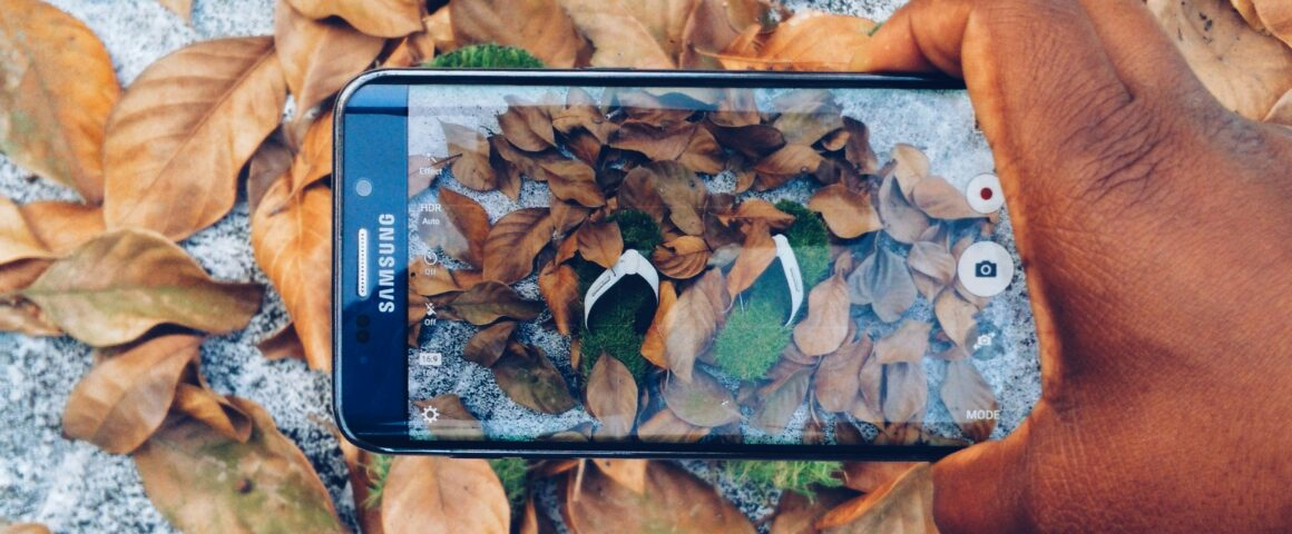 A hand holds a phone camera over a pile of leaves, with a pair of flip flops apparently made of grass in the center.