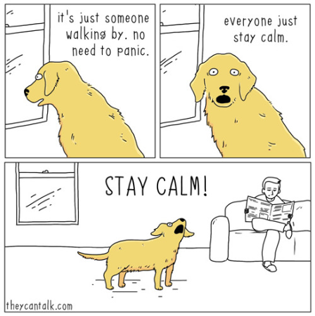 """A cartoon image from Craig 2017 with three components is presented. In the first component a yellow dog looks out a window and the text associated reads """"it's just someone walking by. no need to panic."""" The second component depicts the same dog staring towards the viewer with an open mouth and the following text """"everyone just stay calm."""" The final component shows the same yellow dog barking """"STAY CALM!"""" while his or her owner sits on a couch reading a newspaper."""