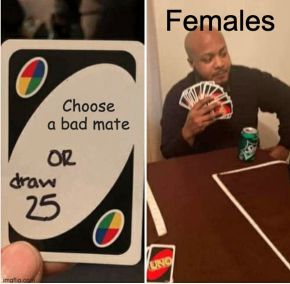 """An Uno Draw 25 meme which depicts two images, one with an Uno Card with the phrasing """"Choose a bad mate"""" and the phrasing """"or draw 25"""" scribbled on it, and other image which depicts a gentleman holding 25 or more Uno cards with the wording """"Females"""" depicted across."""
